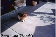 sarah_pretty